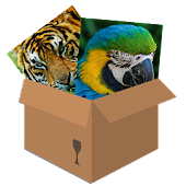 Animals 2: puzzle box
