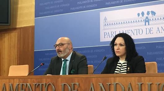 Vox Almería: cuatro crisis en poco más de medio año