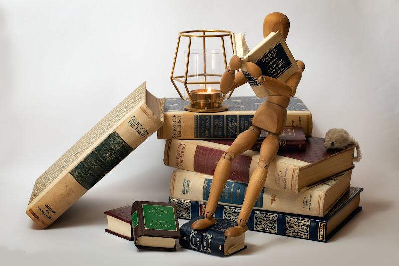 Topo di biblioteca di Sergio Locatelli