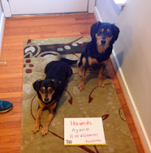 Photo: 3.29.14 Hounds against Harassment prepare for Anti-Street Harassment Week!