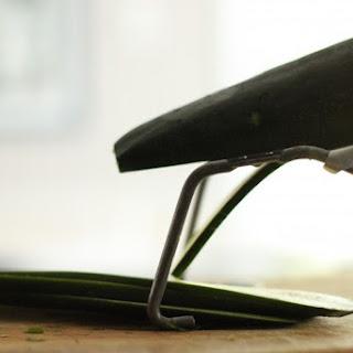Really Fresh Zucchini Slaw