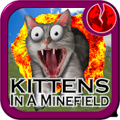Kittens in a Minefield