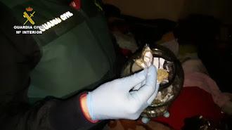 Material incautado por los agentes en la Operación Doscientas.