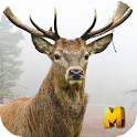 Deer Hunting 3D Sniper Shooter icon