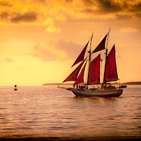 Red Sails by Dominick Bianco - Landscapes Waterscapes ( sailboats, waterscape, sunset, boats,  )
