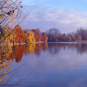 autumn light by Mihai Nita - Landscapes Waterscapes ( autumn light, clouds, sky, park, autumn, waterscape, trees, water-mirror,  )