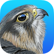 App Icon for iBird United Kingdom Pro App in Czech Republic Google Play Store
