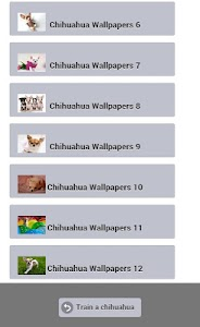 Train a Chihuahua screenshot 5