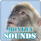 Download Monkey Sounds Ringtone Collection For PC Windows and Mac