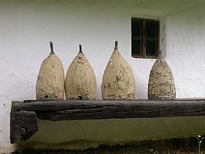 Photo: beehives