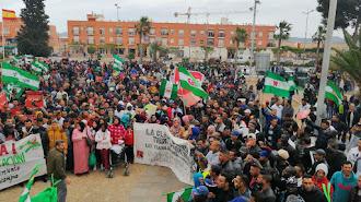 Imagen de la manifestación con un gran número de participantes.