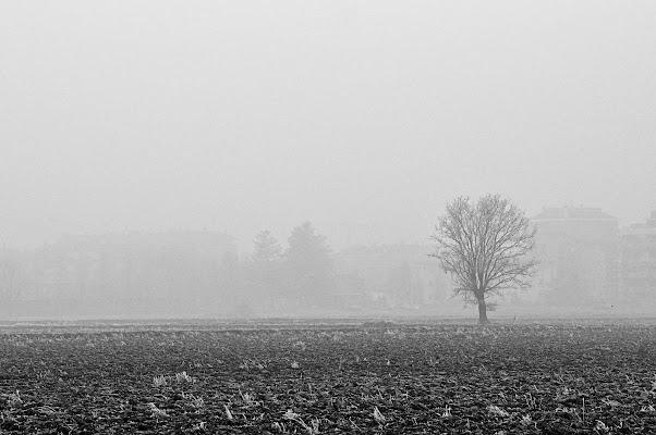 Nebbia a Milano di gianfranco_cosmai