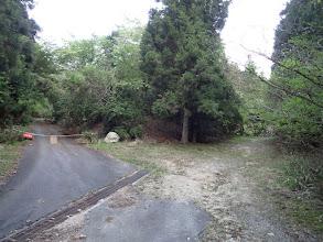 左の林道を進む(直進は東海自然歩道)