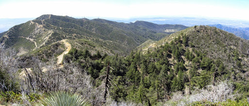 Photo: Panoramic view south from the high point on the ridge toward Culver Peak (5511') and the east end of the San Dimas Experiential Forest. Browns Flat, a unique mountain meadow, is the clear spot on the right.