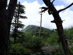 稲子岳が見える