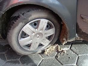 Photo: Wil de eigenaar van deze modder zich melden?