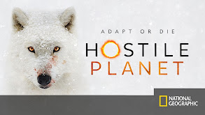 Hostile Planet thumbnail