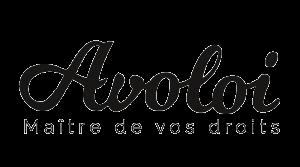 Why - Raison d'être sociétale des entreprises et des dirigeants - Valorisation métier - Valorisation des salariés - Développer la fierté d'appartenance des collaborateurs - Maxime Delaunay dirigeant de la start up Avoloi - Nantes 44 Pays de la Loire