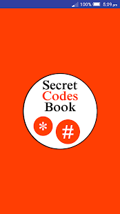Secret Codes Book - náhled