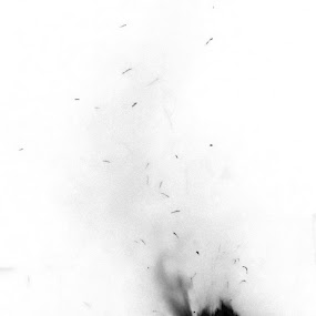 Fire by Nikki Scott - Abstract Fire & Fireworks ( flames, creative, fire, flame )