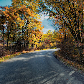 Mt. Tabor Road by Hugh Hazelrigg - City,  Street & Park  Street Scenes ( indiana, fall colors, landscape, rural, shadows, , fall, color, colorful, nature )