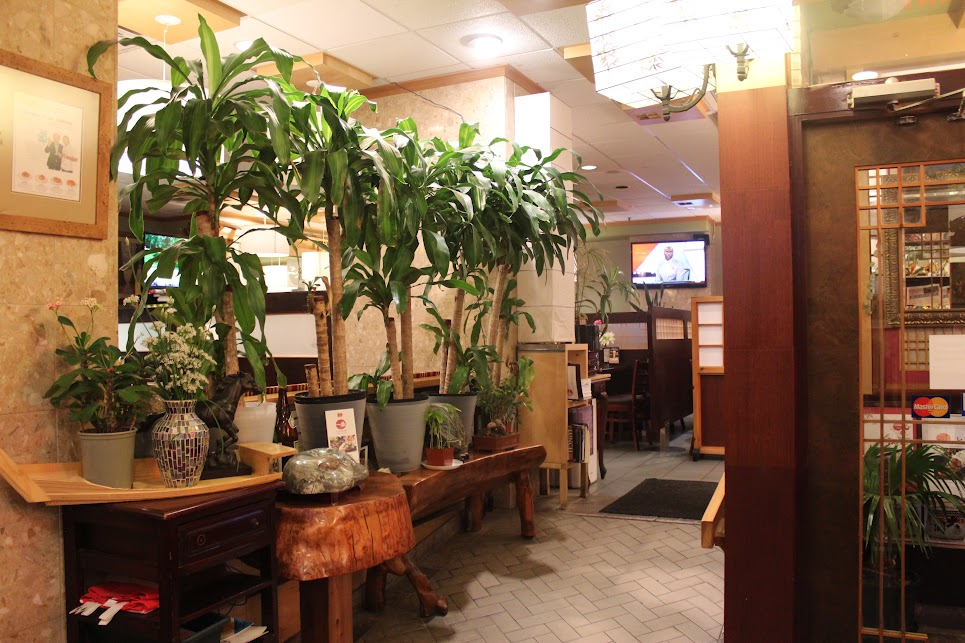 Plants decorate the entrance at ichiban fish house