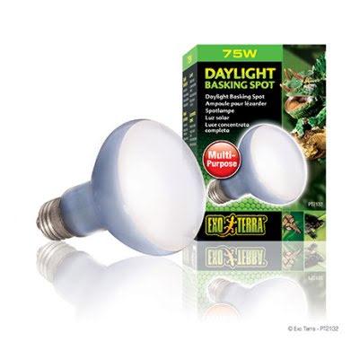 ExoTerra Daylight Basking Spot 75W R20 E27