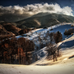 by Veronica Gafton - Landscapes Mountains & Hills ( hills, winter, nature mountain winter cold clouds sky houses shadows sun snow landscape beautiful, trees )