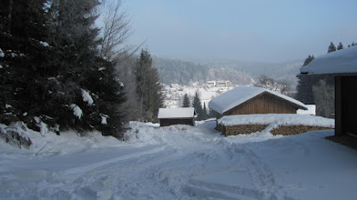 Photo: bei Zwiesel Rabenstein