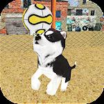 Dog Puppy Craft : Street Football Match 2018