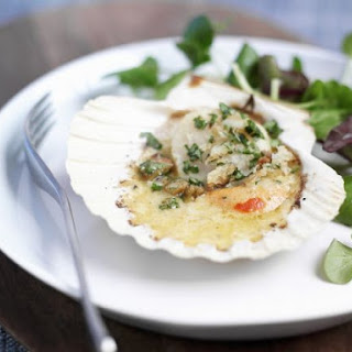 Coquille Recipes