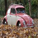 Volkswagen Beetle icon