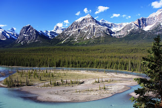 Photo: Icefield Parkway
