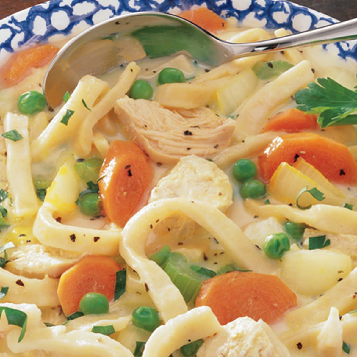 Hearty Chicken and Noodles Soup
