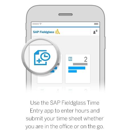 SAP Fieldglass Time Entry Screenshot
