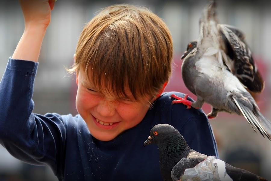 Feeding by Bryan Rasmussen - Babies & Children Children Candids