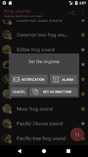 Appp.io - Frog sounds - náhled