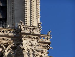 Photo: Gargoyles on Notre Dame.