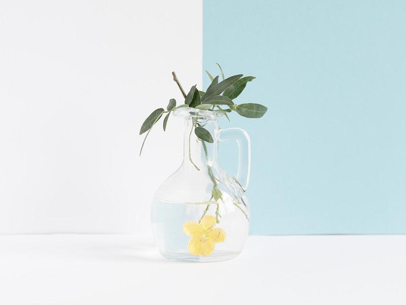 Fiore giallo di renzodid