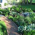 Front Yard Garden icon