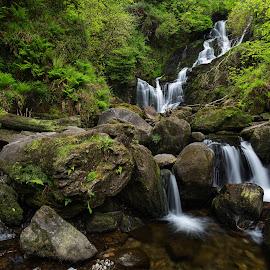 Torc Waterfall by Jirka Vráblík - Landscapes Forests ( forest, waterfall, killarney, torcwaterfall, landscape, ireland )