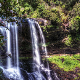 Dry Falls by Jeremy Yoho - Landscapes Caves & Formations ( water, rhododendron, peaceful, nature, green, waterfall, rock, flowers, rocks, flower, gree )