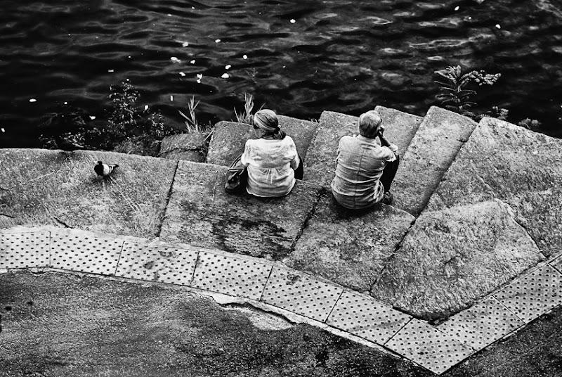 I piccioncin di Luca Gallozza