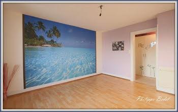 appartement à Saint-die-des-vosges (88)