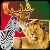 Safari Animal Hunting