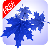 🍁🍃🍂3D Maple Leaves Autumn Live Wallpaper Free