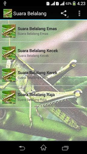 Download Suara Belalang Kecek Masteran Google Play Apps Ajkklyzi3wtc Mobile9