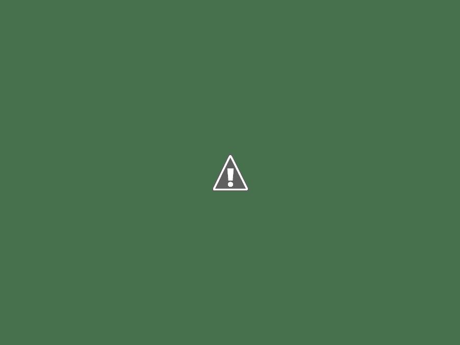 Falkenberg old cars