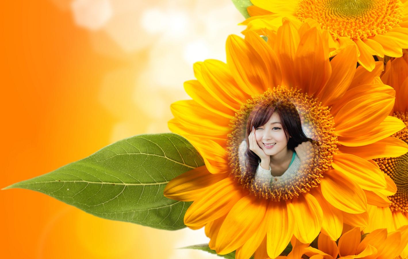 sunflower photo frames screenshot - Sunflower Picture Frames