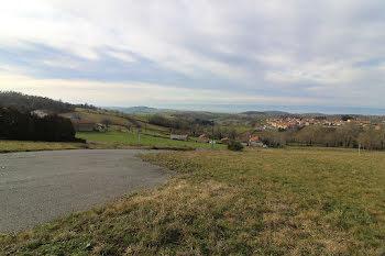 terrain à Montchal (42)